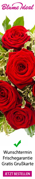 Blumeidealrosen